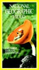 National Geographic Video Classics: Rain Forest [VHS]