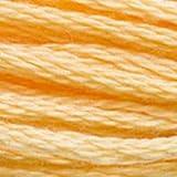 DMC Floss - 3855 Light Autumn Gold