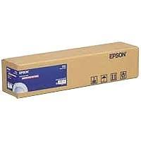 Photo Paper Gloss(250) in Rotoli Da 43, 18cm X 30, 5m Epson C13S041892