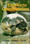 Europäische Landschildkröten: Leben, Haltung, Zucht