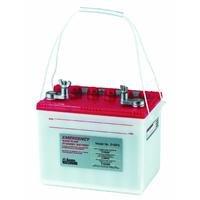 Pump Sump Basement Backup - Basement Watchdog 24EP6 The Emergency Standby Battery