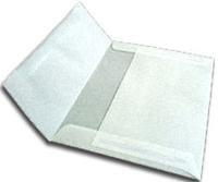 (A-7 Metallic Platinum Translucent Vellum Envelopes (Straight Flap, (5 1/4