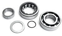 JIMS Twin Cam Outer Cam Bearing Kit (Jims Cam)