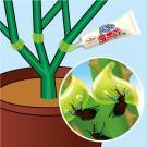 アース製薬 アースガーデン バラの虫ホイホイ 幹に塗るタイプ