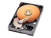 Western Digital 40GB 7200RPM 2MB CACHE IDE Bulk/OEM Hard Drive WD400BB ()