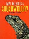 What on Earth Is a Chuckwalla?, Edward R. Ricciuti, 1567110894
