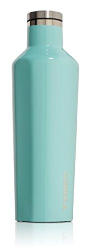Corkcicle Vinnebago Insulated Stainless Steel Bottle/Thermos