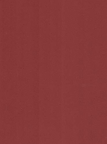 on Stick Brown Cardstock Paper 65# lb, 25 Sheets, Card Stock, Scrapbooking ()