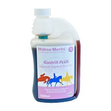Hilton Herbs Gastri X Plus 500 ML