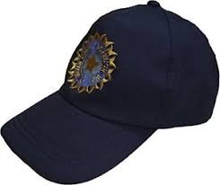 ARFA Sports Team India ODI T-20 Cricket Supporter Cap for Men, 1 Piece (Navy Blue) (B07D1ZGXFK) Amazon Price History, Amazon Price Tracker