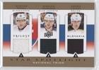 Slv Star (Zdeno Chara; Marian Hossa; Marian Gaborik (Hockey Card) 2013-14 Upper Deck Trilogy - Three Star Spotlight Jerseys - National Trios #SLV-GR8)