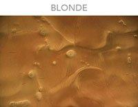 GlobMarble Dura-Kote Epoxy Metallic Blonde (16 ozs). Flooring System, 3D, Reflective pigments. ()