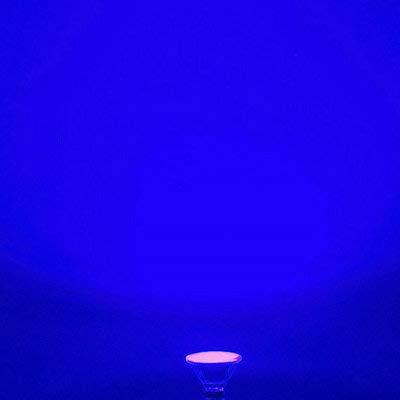 Glass PAR38/PAR30/PAR20 LED Bulb Light,120V,LED Warm White/Daylight