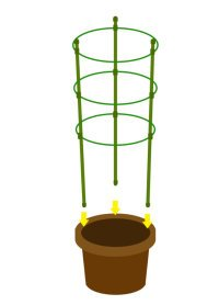Mr.Garden Mini Trellis garden trellis for potted climbing plants support 6.3'' Dia x 7'' Dia x 8.1'' Dia x 24'' H,3 Rings,3 Sets by Mr Garden