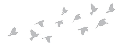 Dove Glass (Flock of Doves - Etched Decal - For Shower Doors, Glass Doors and Windows - 10.5