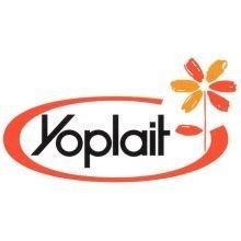 yoplait-original-raspberry-and-peach-yogurt-4-ounce-48-per-case-by-general-mills