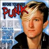 Before You Were Punk