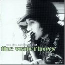 The Live Adventures of the Waterboys (2cds) by Pilot