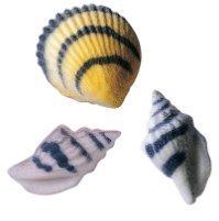 (24pk Seashells Black Stripe 1 1/2