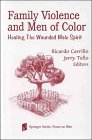Family Violence and Men of Color : Healing the Wounded Male Spirit, , 0826111734