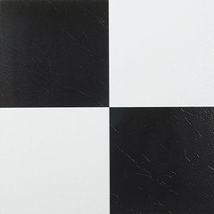 NEXUS Black White Adhesive Vinyl