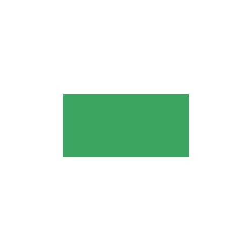 Bulk Buy: Darice Foam Sheet 12 inch x 18 inch 3mm Christmas Green 1194-63 (10-Pack)