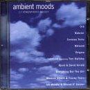 Ambient Moods: 17 Atmospheric Moods