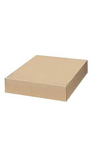 17 x 11 x 2 ½ inch Kraft Apparel Boxes by STORE001