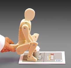 Lifting Manikin Anatomical Model Professional