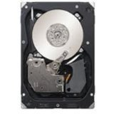 Seagate 300GB SAS 15K Rpm 3GB/S - ST3300656SS