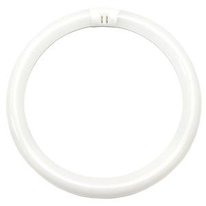 "20142 -  -32 Watt T9 Cool White Circular Fluorescent Light Bulb, 12"" Diameter - Sylvania FC12T9/CW/RS"