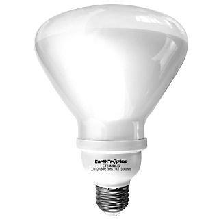 Earthbulb® 23 W 2700K R40 Floodlight Compact Florescent Bulb; Soft White