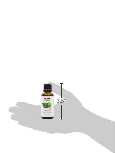 733739076250 - Now Foods Tea Tree Oil, 1 oz (Pack of 2) carousel main 7