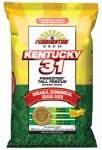Tall Fescue Shade (Pennington Kentucky 31 Tall Fescue Penkoted Powder Coated 25 Lb)