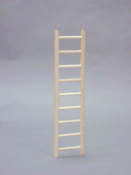 (North American Pet BBO22792 Bob Parrot Ladder,)