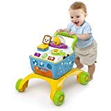 Baby Sit to Stand Walker 4 Stages Play Activity Table Toddler Skill Developing Toys Shopping Cart Pretend Play
