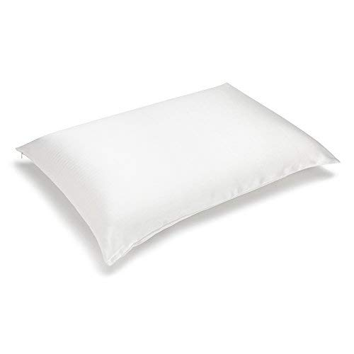 Olesilk 100 Mulbery Silk Pillowcase With Hidden Zipper