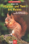 Pflanzen und Tiere des Waldes: Die häufigsten Arten erkennen und bestimmen
