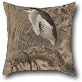 Oil Painting John Gerrard Keulemans - Little Bittern, Ixobrychus Minutus Cushion Covers ,best For Teens,outdoor,wedding,play Room,girls,bedding 20 X 20 Inch / 50 By 50 Cm(twice - Toddler Bedding Toile