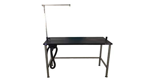Groomer's Best GB48TST 48 in. Stainless Steel Stationary Grooming Table with Arm 36 in. ()