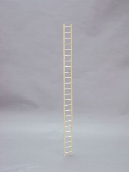 TORRIX BBO22785 Bob Ladder Keet for Pets, 48-Inch by TORRIX