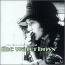 The Live Adventures of the Waterboys (2cds) by Waterboys (1999-02-23)