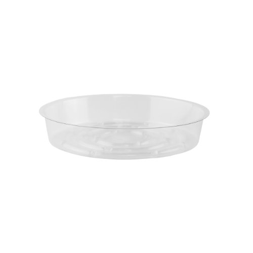 "Syndicate Sales 7"" Saucer, Clear, Bag of 50"