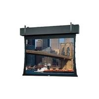 Da-Lite Tensioned Professional Electrol - Projection screen (motorized, 120 V) - 188 in ( 478 cm ) - 16:9 - Dual Vision