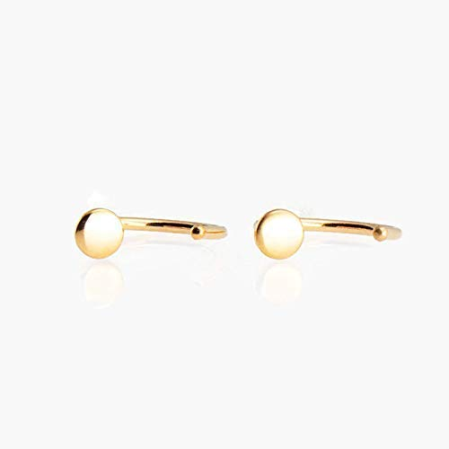 Filled Disc Gold (Tiny Gold Filled Disc Hoop Hugger 3mm Flat Dod Earrings GF-HOOP-20G-D9-3M-Shiny)