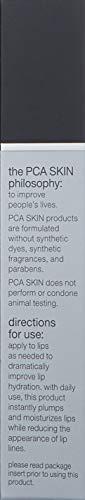 PCA SKIN Hyaluronic Acid Hydrating Lip Booster, Advanced Lip Plumping Moisturizer Treatment, 0.24 fl. oz.