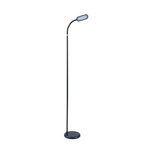 (LED Floor Lamp with Adjustable Gooseneck, Adjustable Color Temperature, and Color Settings)