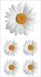 Pkg Daisy - Bulk Buy: Paper House Stickers 2