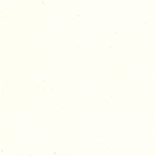 Fox River Select 25 Writing Arctic White Wove 24# #10 Envelope 500/pack by FoxRiver