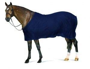 CENTAUR Scrim Dress Sheet Large Horse Black